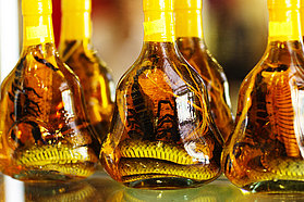 Scorpion and snake alcahol!