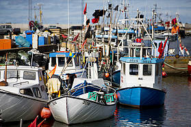 Local fishing fleet