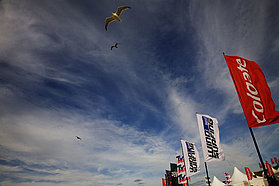 Seaguls fly over event flags