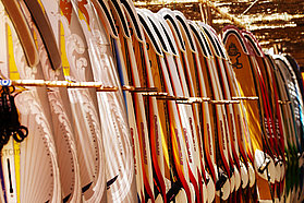 All the boards you could dream of at the Rene Egli Pro centre