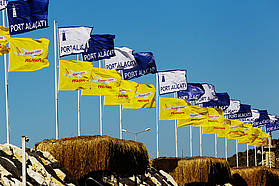 Pegasus flags